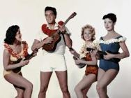 Elvis group ukes