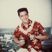 No, I have never met Elvis, LOL